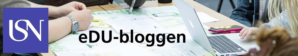 eDU-bloggen